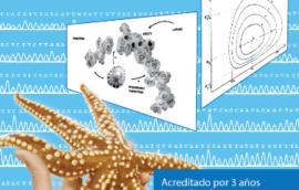 web-ciencias-destacados-s-opt